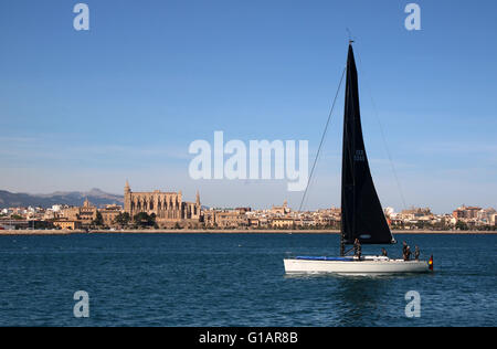 Sailing Yacht (GER 5245) returning past the historic Palma Gothic Cathedral to the Port of Palma de Mallorca - regatta - Stockfoto