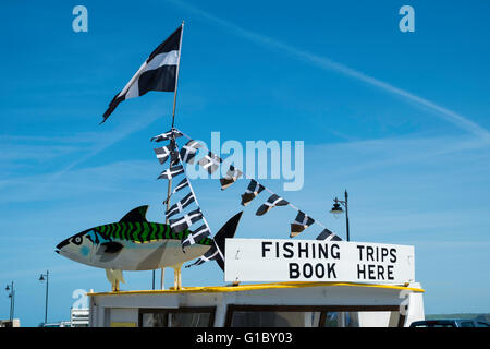 the roof of a fishing trip shack in newquay harbour cornwall - Stock Photo