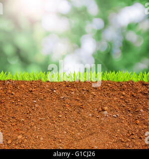 Cross section of grass and soil against blue sky stock for Soil and green