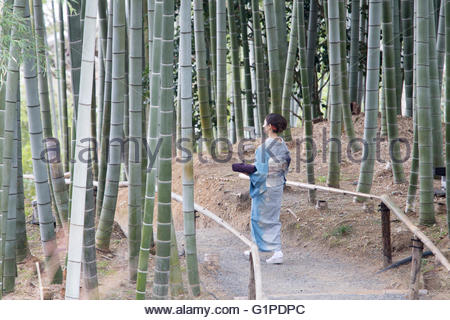 Young Japanese woman in kimono walking with parcel - Stock Photo