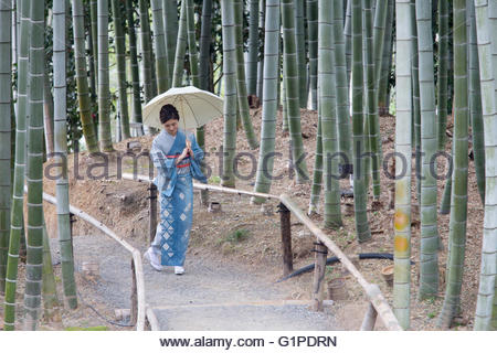 Young Japanese woman in kimono walking with parasol - Stock Photo