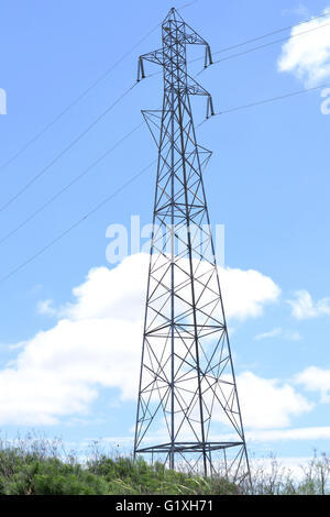 Power plant and power lines in countryside in California, USA - Stock Photo
