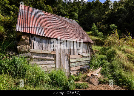 Dilapidated Shed - Stockfoto