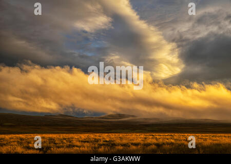 Sunset lights up the clouds while late day sun casts a warm glow on the grass; Iceland - Stock Photo