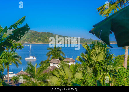 JAMAICA NATURE AND LANDSCAPE - Stock Photo