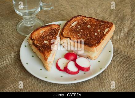toast with ham and cheese on white plate with slices of radish in the background a glass with water - Stock Photo
