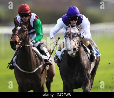 horse racing ladbrokes