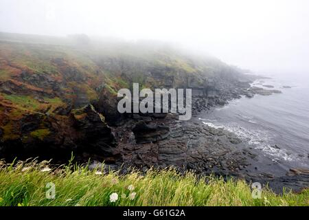 A misty morning at Lizard Point Cornwall England uk - Stockfoto
