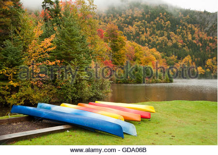 Colorful kayaks competing with foliage on wet morning at a mountain lake - Stock Photo