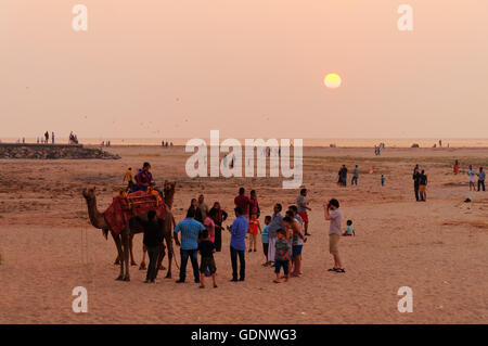 Indian local tourists with a camel on the beach at sunset - Stock Photo