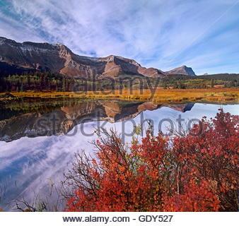 Sofa Mountain with blueberry bushes, Waterton Lakes National Park, Alberta - Stock Photo