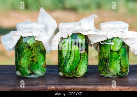 Pickled cucumbers made with home garden vegetables and herbs - Stock Photo