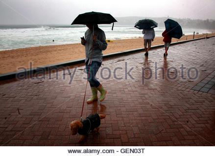 A woman wearing rubber boots and holding an umbrella walks her dog past other pedestrians along Manly Beach in Sydney - Stock Photo