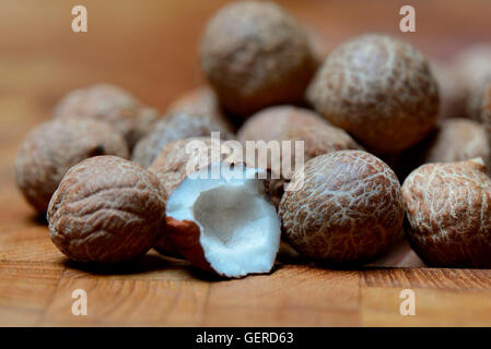 Honigpalme