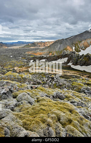 Moss, lava field and mountains, Graenagil Canyon, Landmannalaugar, Fjallabak Nature Reserve, Iceland - Stock Photo