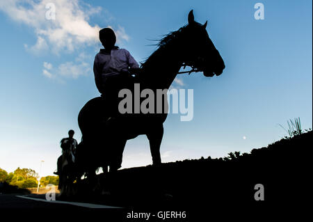 A horse rider and his horse in silhouette in Ballydehob, West Cork, Ireland. - Stockfoto