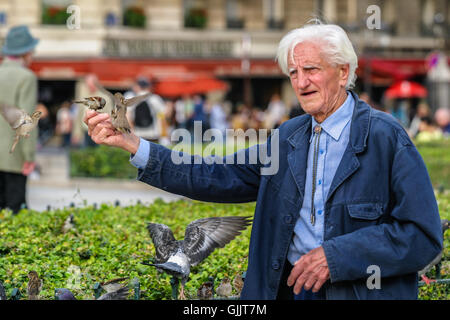 Old Man Feeding Birds In The Leopold Park In Brussels Belgium Stock Photo Royalty Free Image