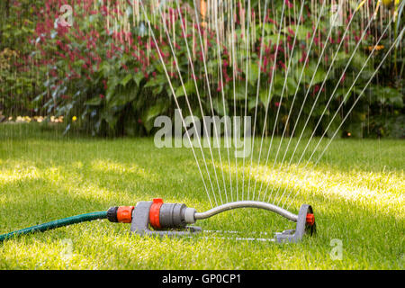 Close up of a lawn sprinkler - Stock Photo