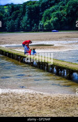 A bridge across a river estuary at low tide in Cornwall. - Stock Photo