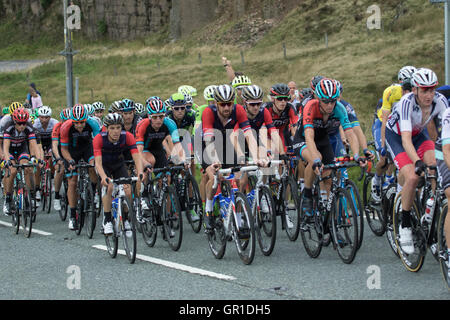 Cheshire, UK. 6th September, 2016. The peloton during the climb to the Cat and Fiddle, containing Sir Bradley Wiggins - Stock Photo