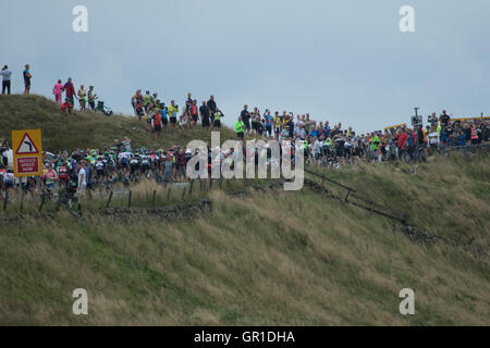 Cheshire, UK. 6th September, 2016. The peloton passing between appreciative crowds during the climb to the Cat and - Stock Photo