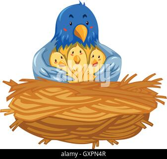 Mother bird and babies birds in nest illustration - Stock Photo