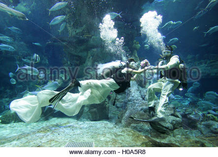 Two models acting as a couple hold a wedding program under water to promote new wedding packages at the Ocean Park - Stock Photo