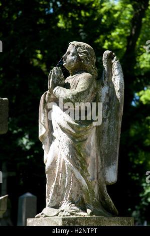 Angel, Statue, Alter Friedhof cemetery, Bonn, Rhineland, North Rhine-Westphalia - Stockfoto