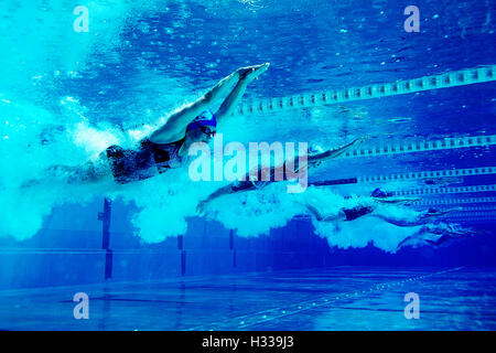 Swimmers during a competition - Stockfoto