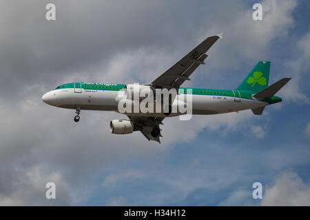 Aer Lingus Airbus A320-214 approaching London Heathrow airport. - Stock Photo