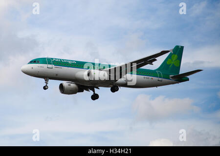 Aer Lingus - Airbus A320-214 approaching London Heathrow airport. - Stock Photo