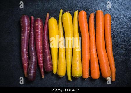 Rainbow carrots from above on dark slate - Stockfoto