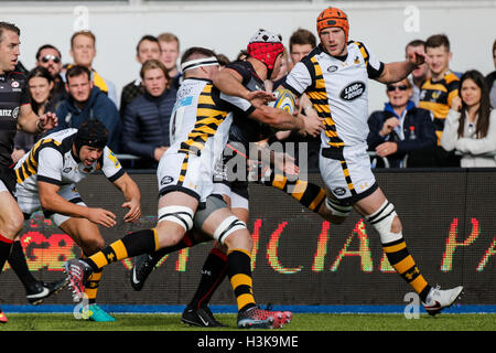 Barnet Copthall, London, UK. 09th Oct, 2016. Aviva Premiership Rugby. Saracens versus Wasps. Schalk Brits of Saracens - Stock Photo
