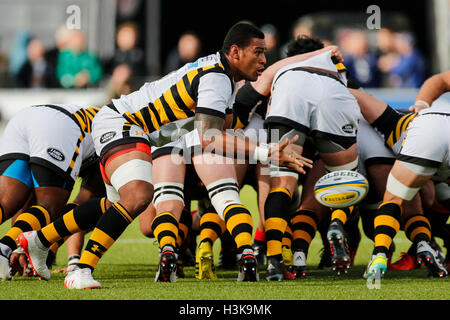 Barnet Copthall, London, UK. 09th Oct, 2016. Aviva Premiership Rugby. Saracens versus Wasps. Nathan Hughes of Wasps - Stock Photo