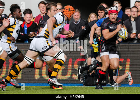 Barnet Copthall, London, UK. 09th Oct, 2016. Aviva Premiership Rugby. Saracens versus Wasps. Schalk Brits of Saracens - Stockfoto