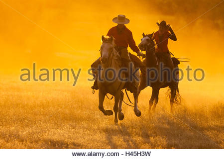Cowgirl and Cowboy galloping on their horses through a dusty field, Sunset, USA, Wyoming, Shell, - Stock Photo
