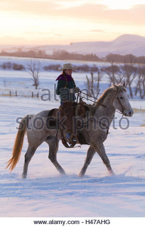 Cowgirl riding on Quarter Horse through snow-covered landscape, sunset, - Stock Photo