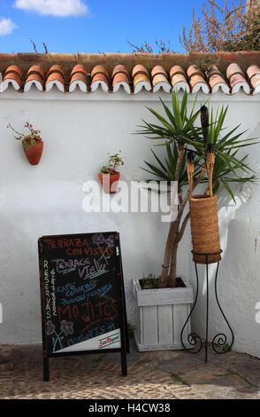 Spain, Andalusia, Vejer de la Frontera, white village in the province Cadiz, white defensive wall with small palm - Stock Photo
