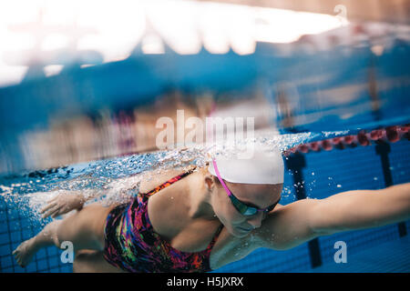 Underwater shot of woman swimming in pool. Young female swimming the front crawl in a pool. - Stockfoto