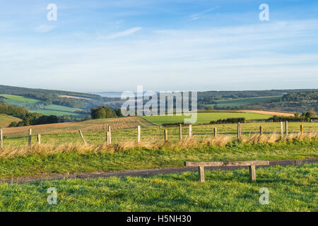 View over the Goodwood in chichester - Stock Photo