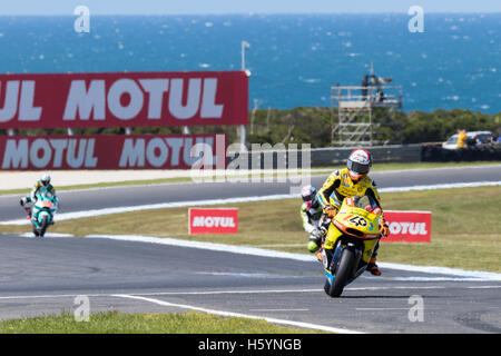 Melbourne, Australia. 23rd October, 2016. MotoGP warm-up during during the 2016 Michelin Australian Motorcycle Grand - Stock Photo