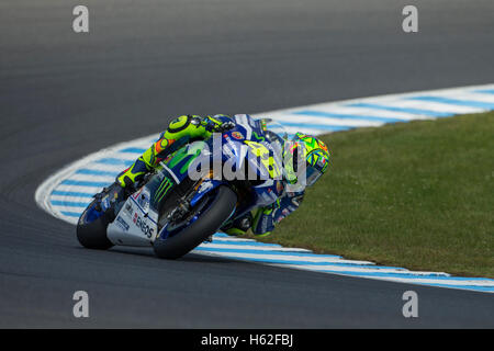 Phillip Island, Australia. 23rd October, 2016. MotoGP. Warm Up. Valentino Rossi, Movistar Yamaha MotoGP Team. Credit: - Stock Photo