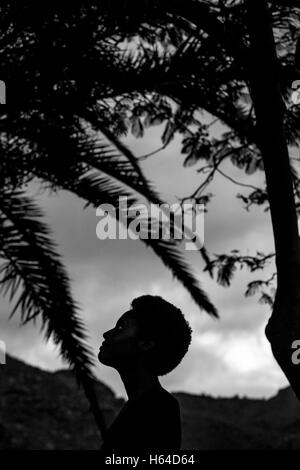 Silhouette of woman's head in nature - Stock Photo