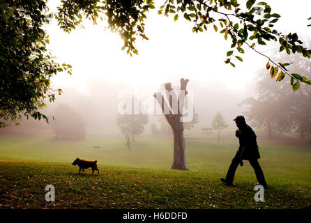 Brighton, UK. 27th Oct, 2016. Dog walkers enjoy a beautiful misty Autumnal morning in Queens Park Brighton today - Stock Photo