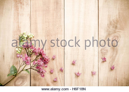 Spring Purple flowers on old wooden background - Stock Photo