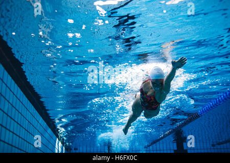 Underwater shot of young woman swimming the front crawl in pool. Fit female athlete swimming in pool. - Stockfoto