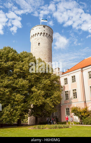 Pikk Hermann Tower, part of Toompea Castle, and Estonian Parliament building, Old Town, Tallinn, Estonia - Stock Photo