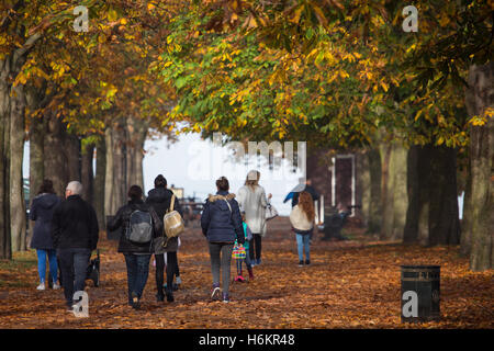 Greenwich, London, United Kingdom. 31st October, 2016. A misty morning in London gave way to beautiful autumn sunshine - Stock Photo