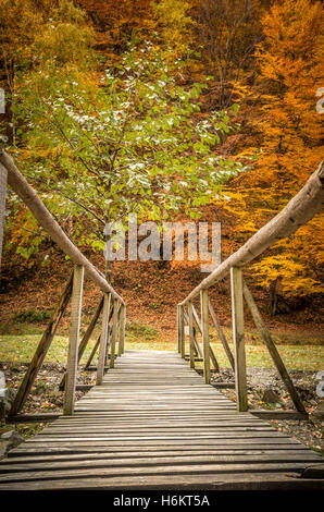 Autumn in the forest. Old wooden bridge over a mountain river. - Stock Photo