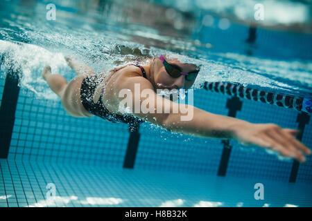 Underwater shot of young sportswoman swimming in pool.  Female swimmer inside swimming pool. - Stockfoto